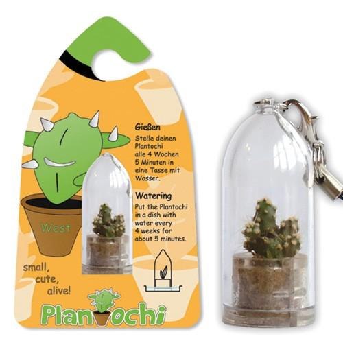 Żyjący brelok Plantochi