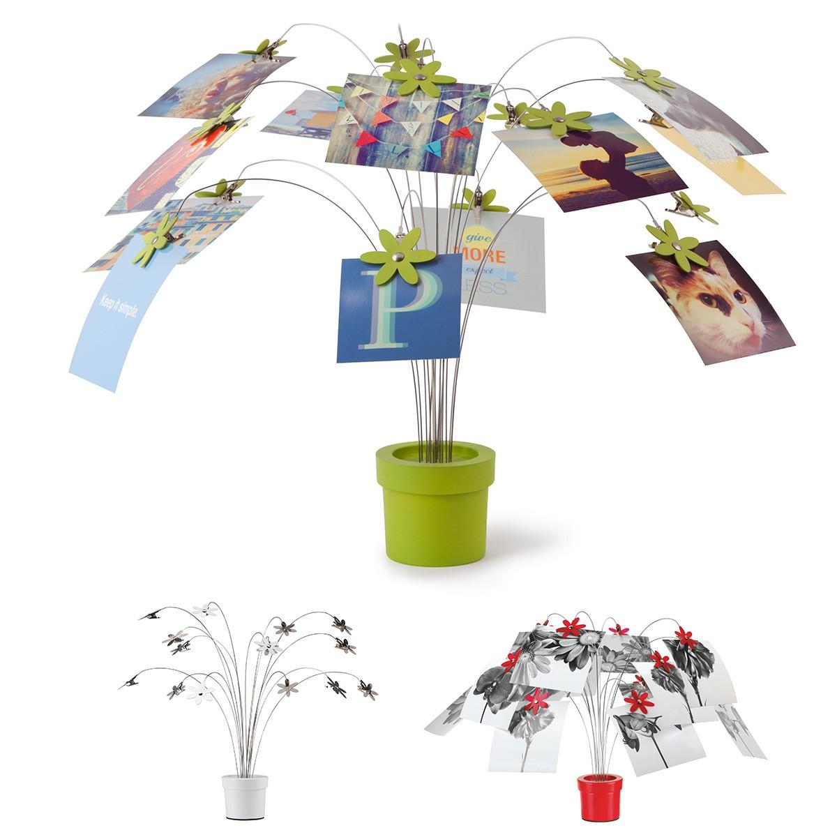 Fotoroślina - stojak na zdjęcia